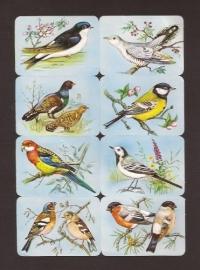 Kruger 99/2 A Zangvogels poezieplaatjes
