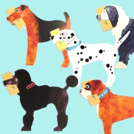Mini geschenk kaarten complete set Honden