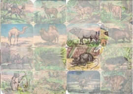 Editions Chagor Liege No 21969 - Plaat III Wilde dieren