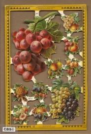 Druiven en ander fruit poezieplaatjes A 97