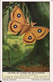 Liebig: Letters en Cijfers bij de Vlinders - Aglia tau (Tauvlinder)