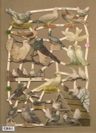 Duiventil met duiven Poëzieplaatjes 7299