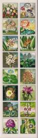 Kleine bloemen poezieplaatjes Stickers Strip QT29