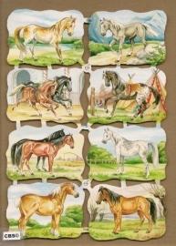 Paarden poezieplaatjes 7149
