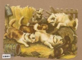 Hondjes in het stro poezieplaatjes 5043