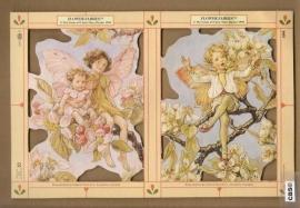 Bloemenkindertjes Cicely Mary Barker poezieplaatjes 1898