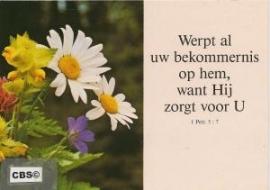 Wilde bloemen - kaart met Bijbelse tekst 1 Petr. 5 : 7 [10250]