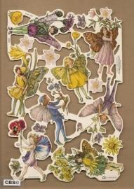 Bloemenkindertjes Cicely Mary Barker poezieplaatjes 2095