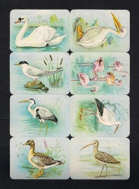 Kruger 99/3 A Watervogels met Zwaan poezieplaatjes