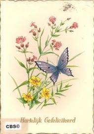 Wilde bloemen met vlinder (2) oude AFHK kaart poezieplaatjes [10236]