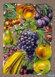 Fruit poëzieplaatjes 7311