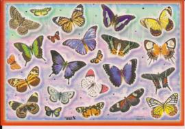 Poezieplaatjes vlinders stickers TBZ 662371