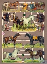 Paarden poezieplaatjes 7322
