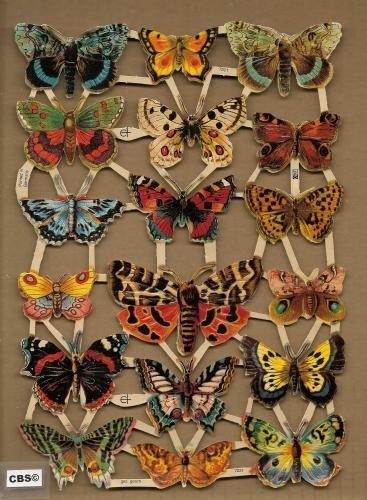 Vlinders poezieplaatjes 7221