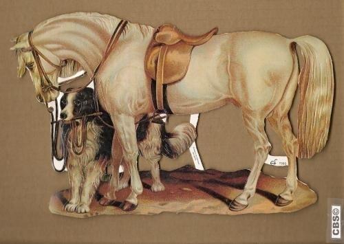 Wit paard met hond poëzieplaatjes 7089
