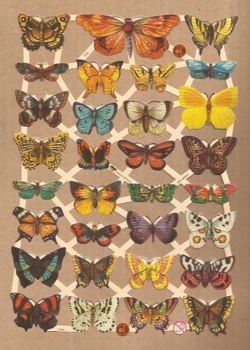 Vlindertjes klein poezieplaatjes 7336