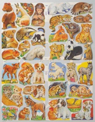Jonge dieren poezieplaatjes 1487 & 1488