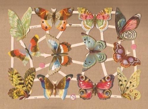 Allerlei Vlinders poezieplaatjes 7408