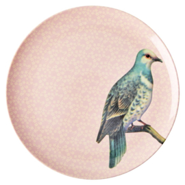 Rice Melamine Dinner Plate with Vintage Bird Print - Soft Pink -plat model-