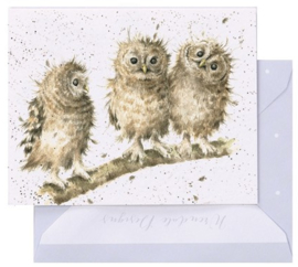Wrendale Designs 'You First!' miniature card