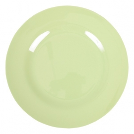 Rice Melamine Round Dinner Plate in Mint