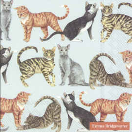 Emma Bridgewater Cats Light Blue Lunch Napkins