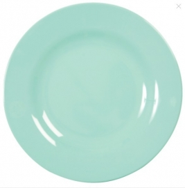 Rice Melamine Round Dinner Plate in Dark Mint