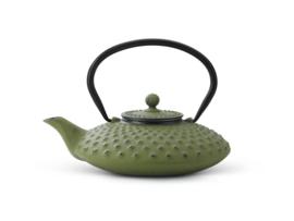 Bredemeijer Cast Iron Teapot Xilin 0,8 liter Green