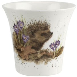 Wrendale Designs 'Hedgehog' Vase / Flowerpot / Herb Pot -10 cm hoog-