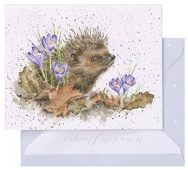 Wrendale Designs 'New Beginnings' miniature card