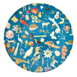 Rice Melamine Dinner Plate with Blue Art Print -bord met rand-