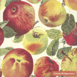 Emma Bridgewater Vegetable Garden Apples Lunch Napkins