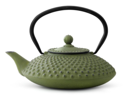 Bredemeijer Cast Iron Teapot Xilin 1,25 liter Green