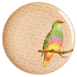 Rice Melamine Dinner Plate with Vintage Bird Print - Nougat -plat model-