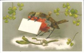 Meander Ansichtkaart Roodborstjes en Mistletoe