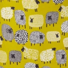 Dotty Sheep