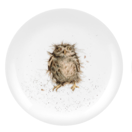 Wrendale Designs Lunch Plate What a Hoot
