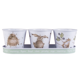 Wrendale Herb Pots and Tray -owl, hare, mouse-