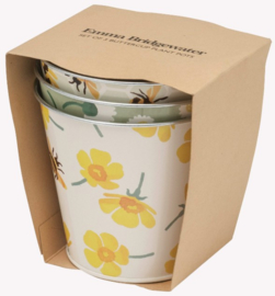Emma Bridgewater Buttercup Scattered Set of 3 Round Tin Herb Pots