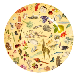 Rice Melamine Dinner Plate with Creme Art Print -bord met rand-