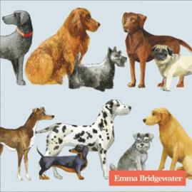 Emma Bridgewater Dogs Light Blue Cocktail Napkins
