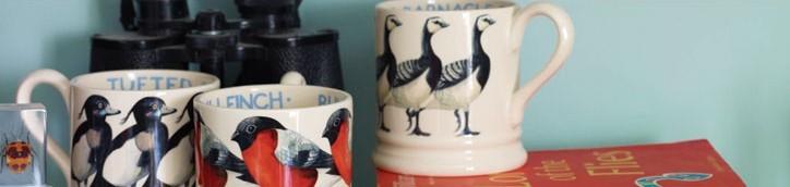 emmabridgewaterbirdsbanner2013.jpg