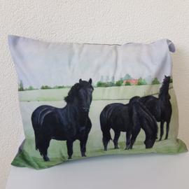 Kussen paarden smal