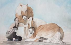Haflingers aquarel schilderij