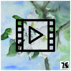 Live les / tutorial aquarel: appelbloesem