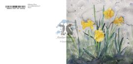Narcis wenskaart