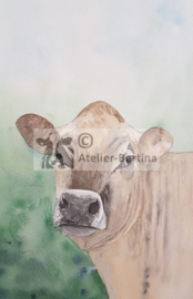 New Jersey koeien aquarel schilderij