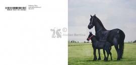 Fries paard met veulen wenskaart