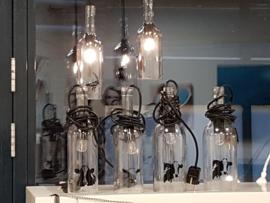 Flessen lamp met kievit