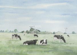 Koeien aquarel schilderij